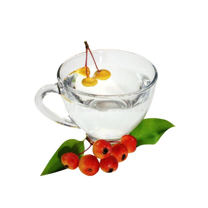 可口自创鸡尾酒用在玻璃的新鲜的莓果,被隔绝反对白色背景 免版税库存图片