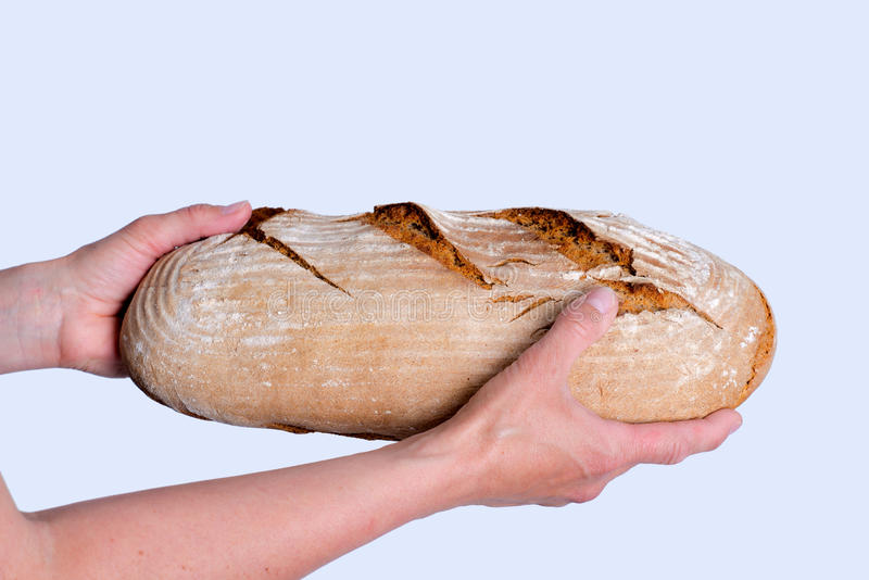 可口自制面包在妇女` s手上 库存照片