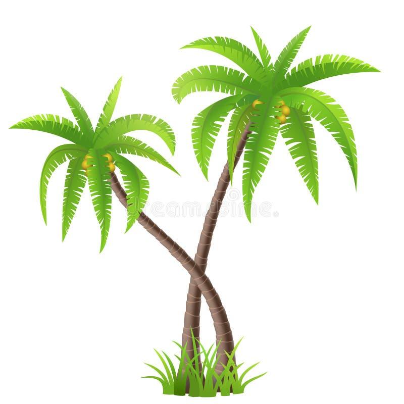 可可椰子树 向量例证