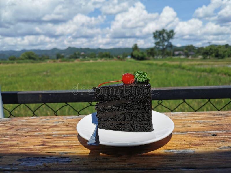 可可粉在一棵白色板材和樱桃的巧克力蛋糕在上面 在绿色自然背景和美丽的天空蔚蓝和白色云彩 免版税库存图片