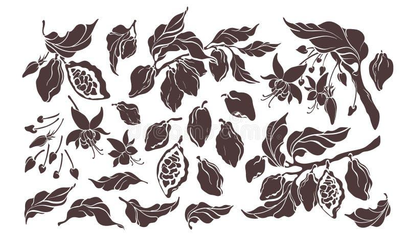 可可粉集合 传染媒介元素 植物的艺术手拉的小组孤立 库存例证