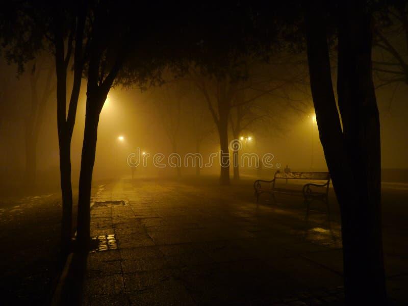 可怕有雾的夜在城市公园 库存图片
