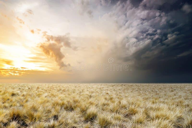 可怕草原有阴暗天空背景 免版税库存照片