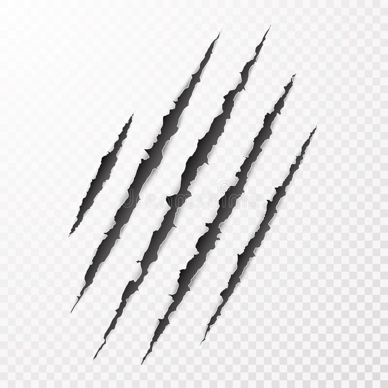 可怕leceration纸表面 野生动物爪抓痕纹理 被撕毁的边缘纸张 也corel凹道例证向量 皇族释放例证