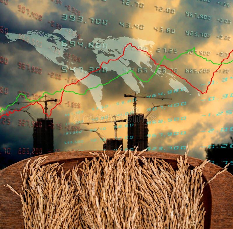 可怜的概念,在木盘子的稻米有成长曲线图的 免版税图库摄影