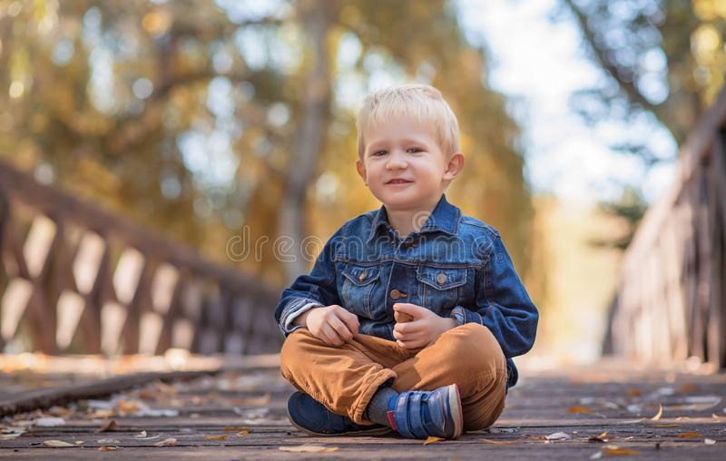可爱木桥的小男孩 库存图片
