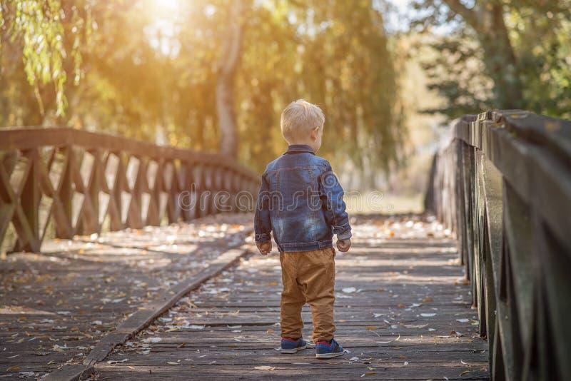 可爱木桥的小男孩 免版税图库摄影