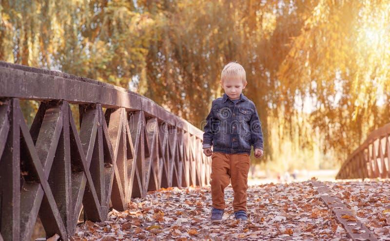 可爱木桥的小男孩 免版税库存图片