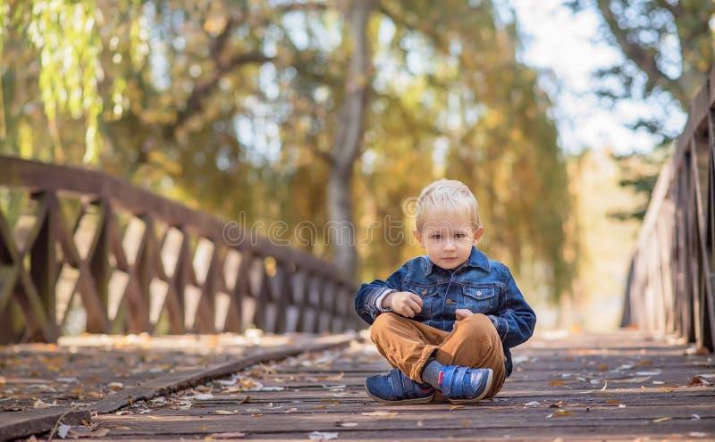 可爱木桥的小男孩 库存照片