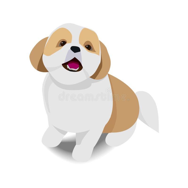 可爱的与阴影的开会棕色和白色狗在白色backgr 库存例证