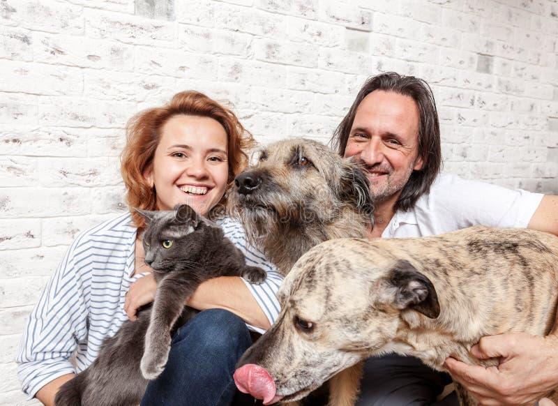 可爱的人和他的年轻妻子有宠物、两条狗和猫的, 免版税库存照片