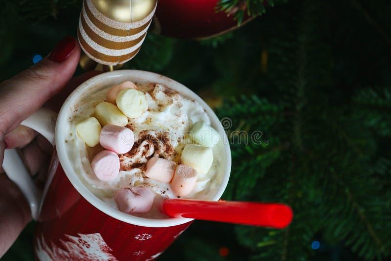 可爱的圣诞节震动 免版税图库摄影