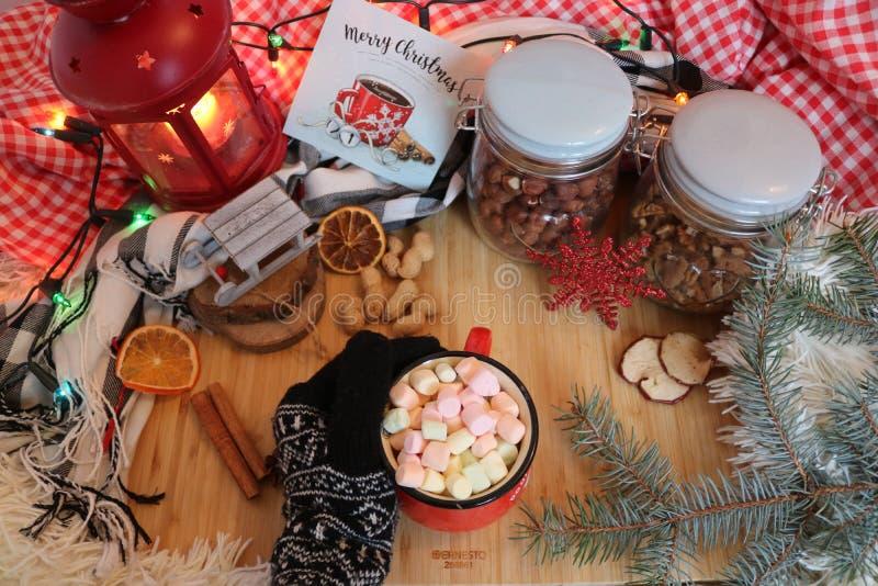 可爱的圣诞节震动 库存照片