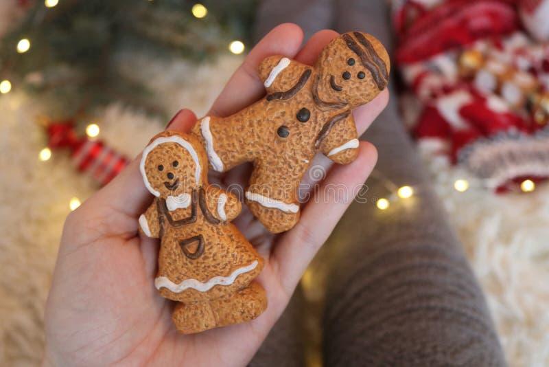 可爱的圣诞节震动 库存图片