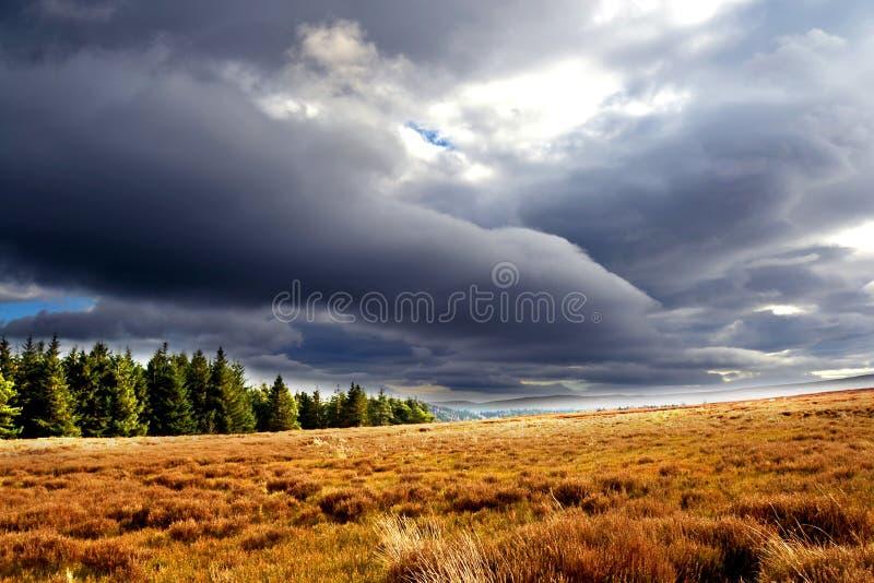 可爱的天空和美好的自然 库存照片