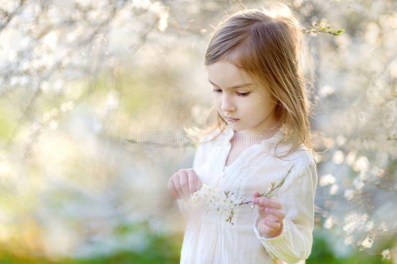 可爱的女孩在开花的樱桃庭院里 库存照片