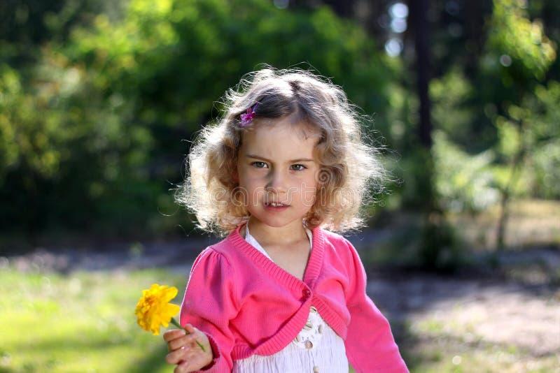 可爱的女花童 库存照片