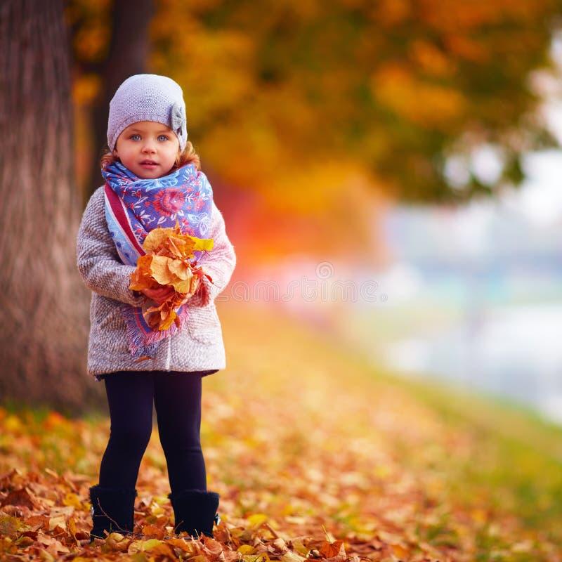 可爱的女婴在秋天公园 免版税库存图片