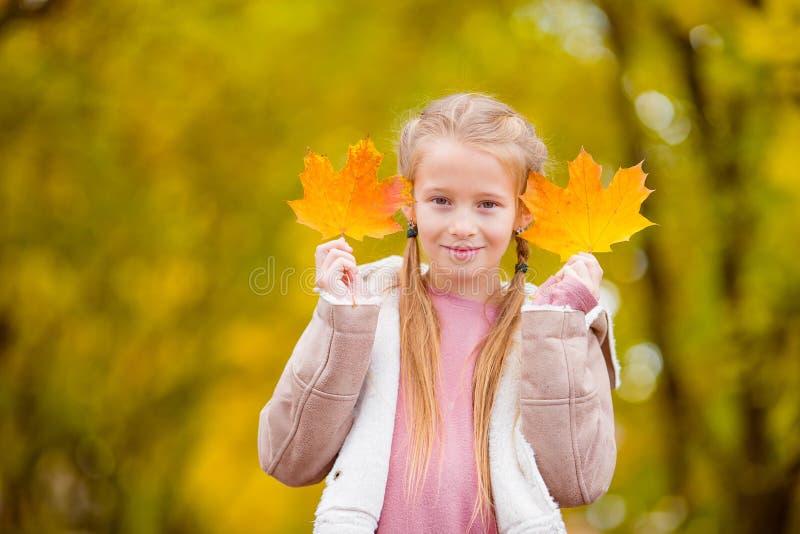 可爱的小女孩户外美好的秋天天 库存图片