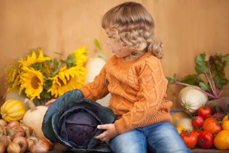 可爱的小孩女孩用红叶卷心菜和秋天收获 库存照片