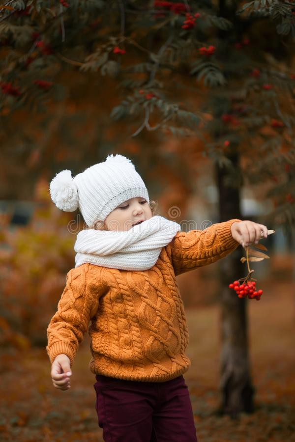可爱的小孩女孩画象在美好的秋天天 免版税图库摄影
