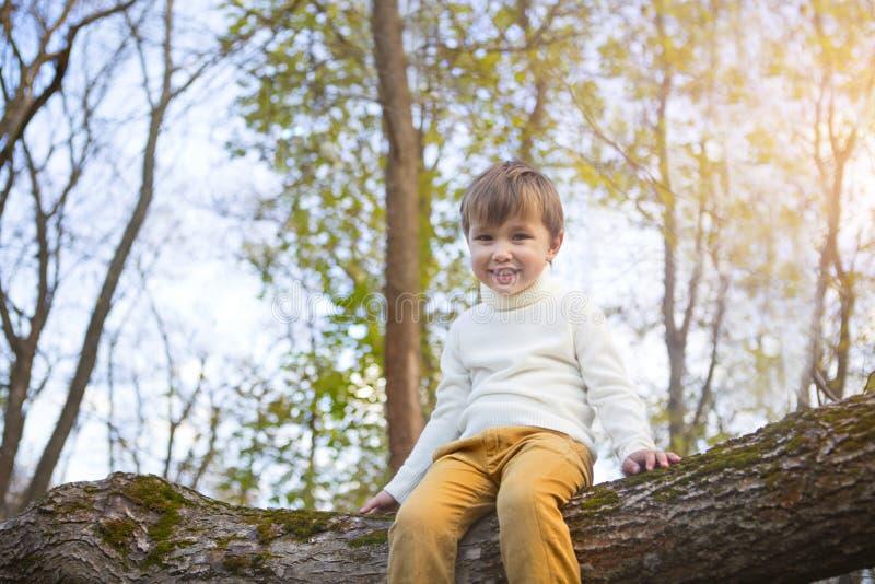 可爱的小男孩在日落的公园 免版税库存图片