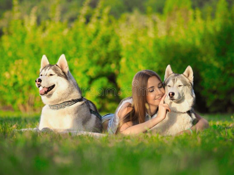 可爱的少妇在与两条滑稽的西伯利亚爱斯基摩人狗的草放置 库存照片
