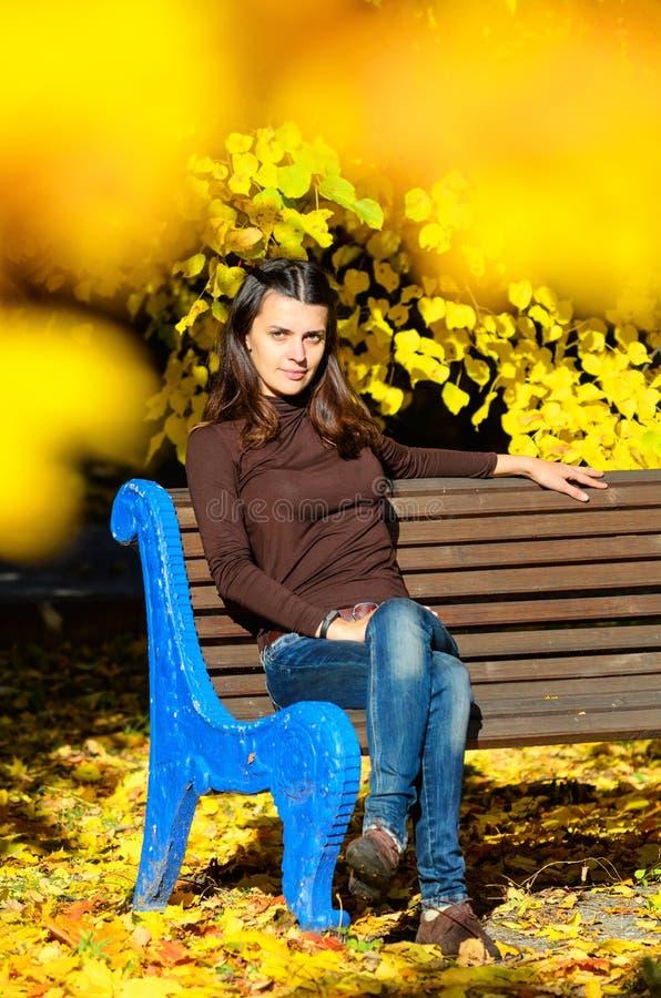 可爱的少妇坐棕色长木凳在美丽的公园 她看stright照相机 金黄秋天 免版税库存照片