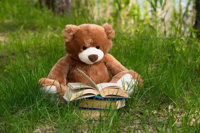 可爱的布朗玩具熊玩具和书坐绿草领域,教育孩子概念 免版税图库摄影