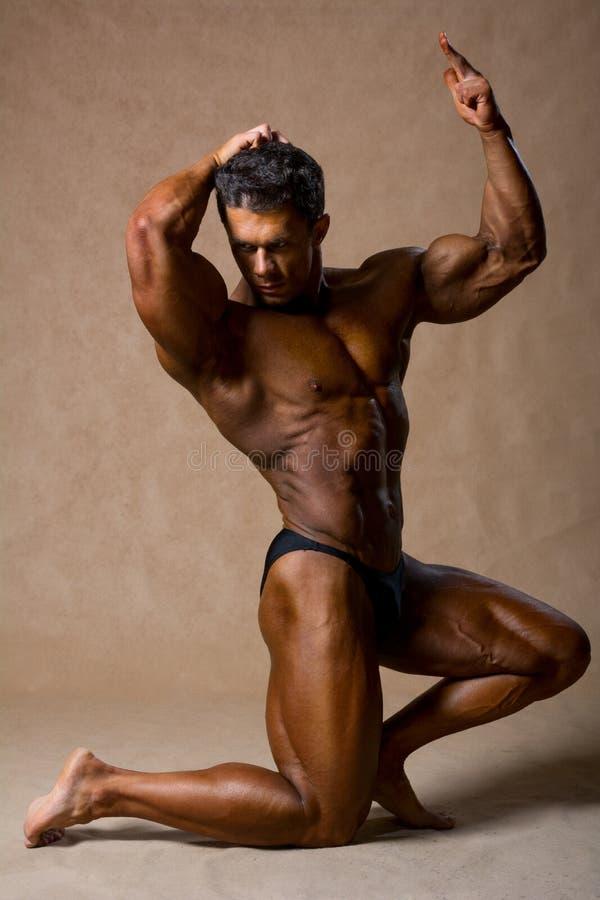 可爱的爱好健美者展示男性身体秀丽  库存图片