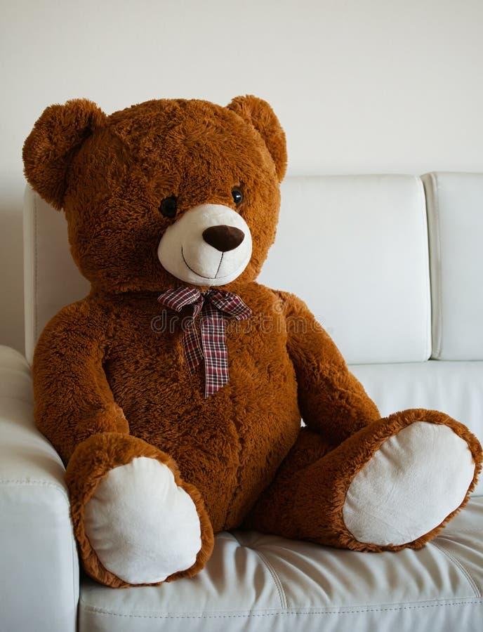 可爱的玩具熊坐沙发 免版税库存照片