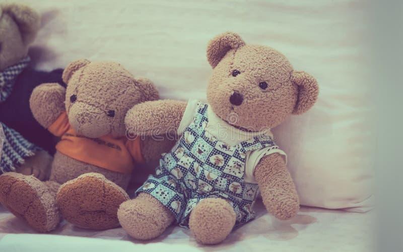 可爱的玩具熊布朗玩偶 库存照片
