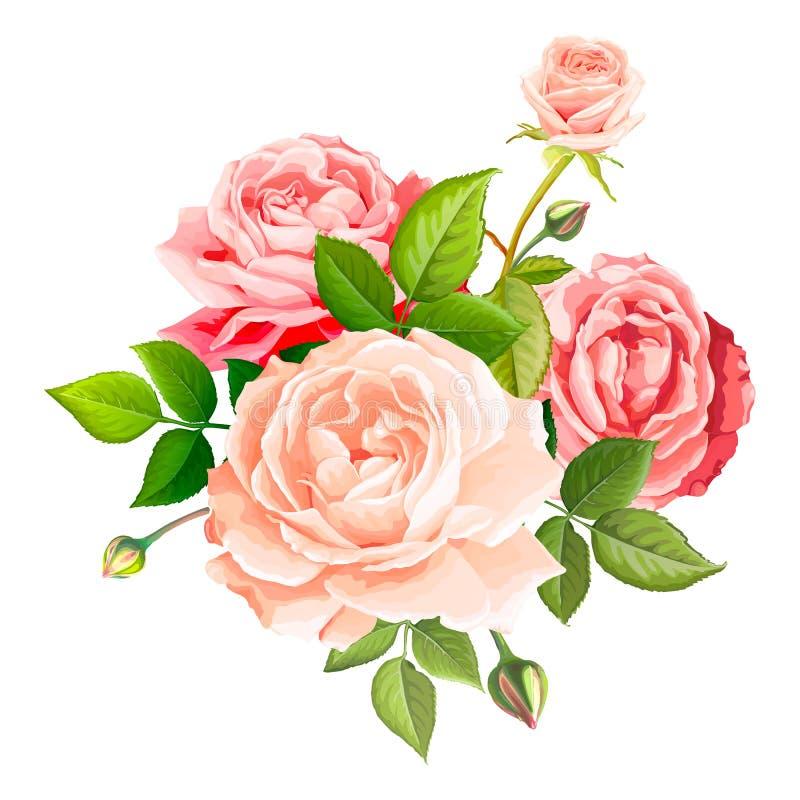 可爱的玫瑰色花 向量例证