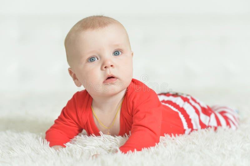 可爱的男婴画象背景的 免版税库存图片
