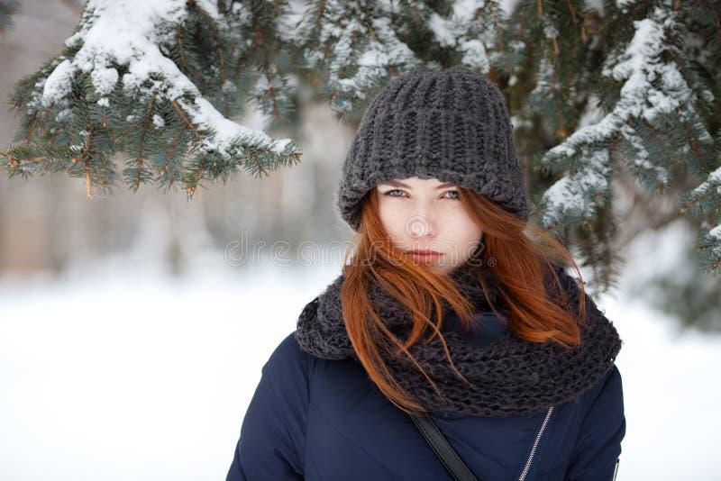 年轻可爱的红头发人妇女特写镜头美丽的冬天画象在逗人喜爱的被编织的帽子冬天多雪的公园 免版税库存图片