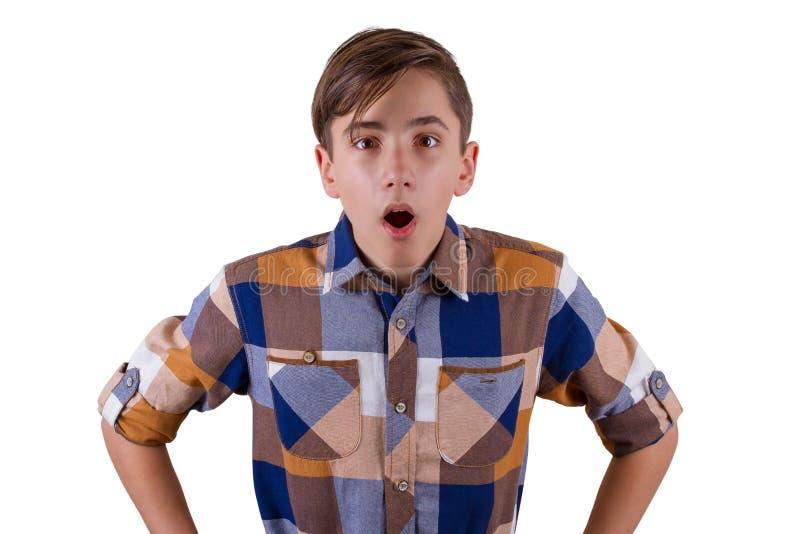 可爱的青少年的男孩画象  免版税库存图片