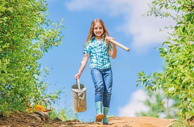 可移动的玫瑰允许适度流程 从事园艺的技巧 r 女孩儿童举行铁锹喷壶 ?? 免版税库存图片