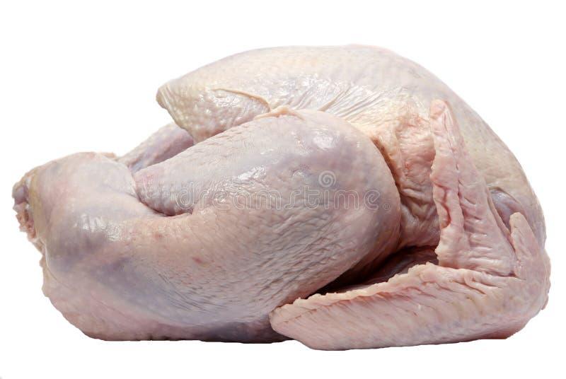 可立即烹调的火鸡 免版税库存图片