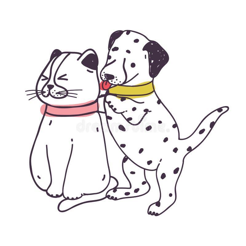 可笑的狗讨厌的猫 激怒和打扰小猫的嬉戏的淘气达尔马希亚小狗隔绝在白色背景 皇族释放例证