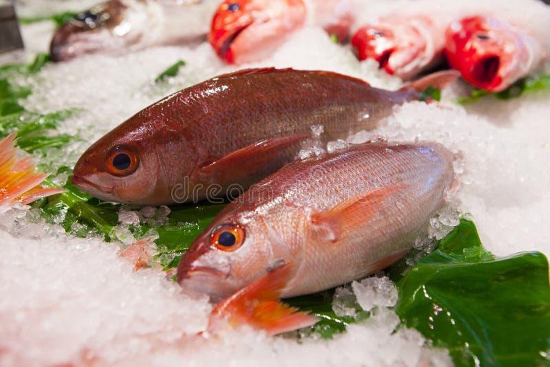 台湾台北,观光的鱼市,在水生产品,旅游胜地,海鲜商店,水生餐馆,新s 库存图片