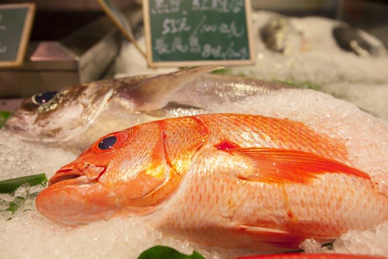 台湾台北,观光的鱼市,在水生产品,旅游胜地,海鲜商店,水生餐馆,新s 免版税图库摄影