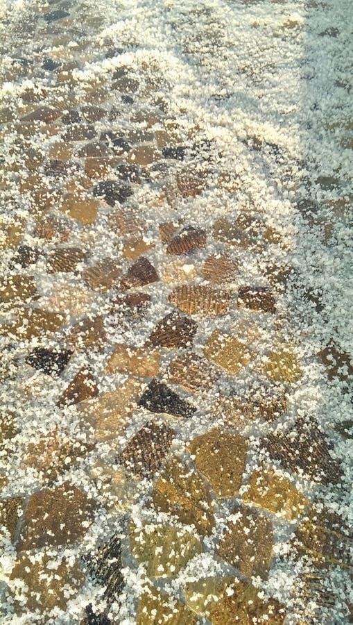 台湾台南瓦片被铺的盐领域 库存照片
