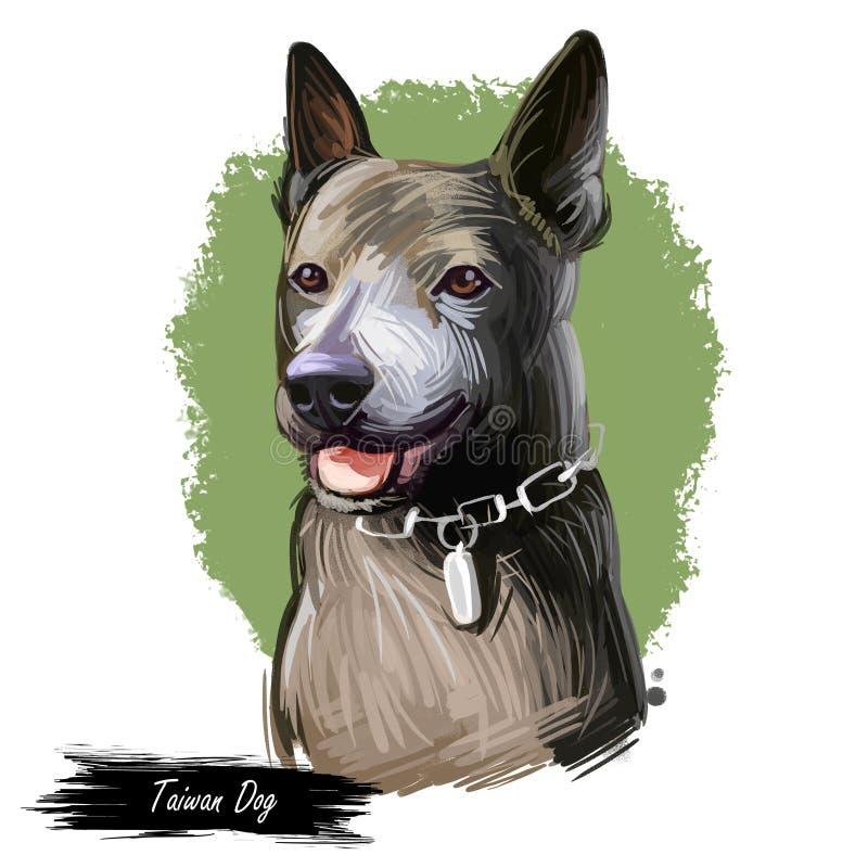 台湾狗品种,台湾犬,台湾犬属当地高砂小狗 r 动物水彩画象特写镜头 库存例证