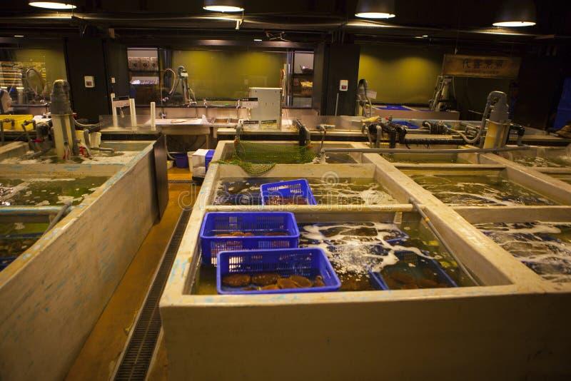 台湾` s著名水生市场,在主角水生产品,吃海鲜?在打字的词是名字和价格o 图库摄影