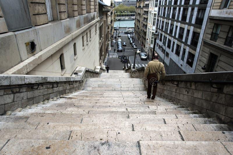 台阶向塞纳河 库存照片
