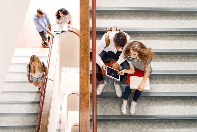 台阶的少年学生在高中 库存图片