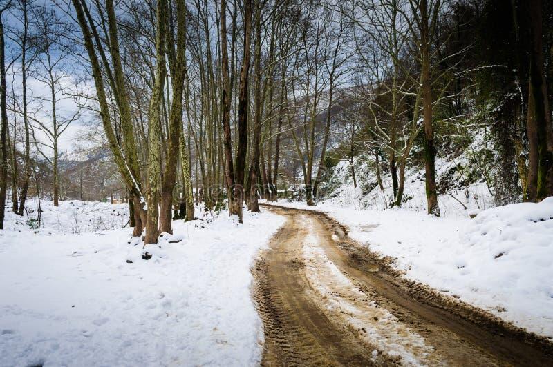 史诗牧人冬天风景 免版税库存图片