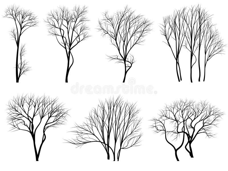 叶子剪影结构树 向量例证
