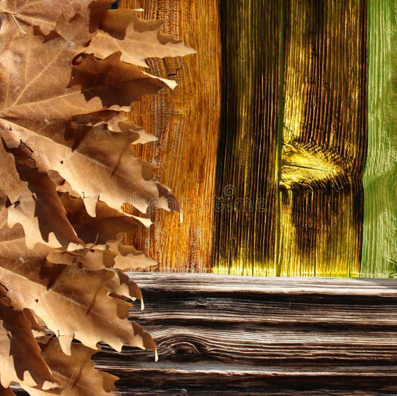 叶子和木头 库存图片