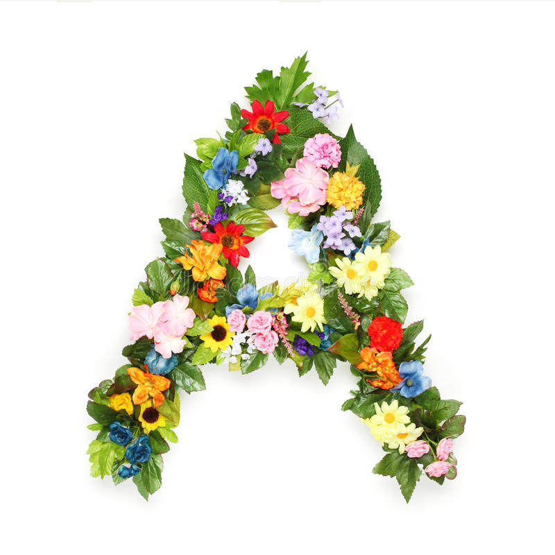 叶子和花信件  库存图片